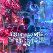 Nothings ever good enough cover image