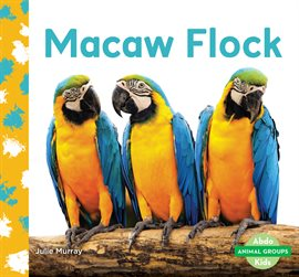Cover image for Macaw Flock