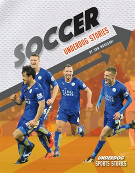Cover image for Soccer Underdog Stories