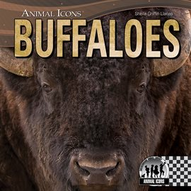Cover image for Buffaloes