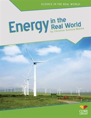 Energy in the real world cover image