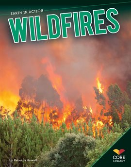 Cover image for Wildfires