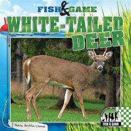 Cover image for White-Tailed Deer