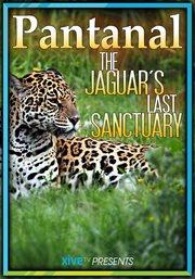 The Pantanal: the Jaguar's Last Sanctuary