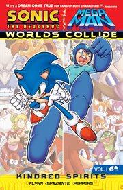 Sonic the Hedgehog Mega Man