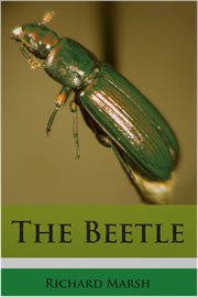 The beetle a mystery cover image