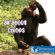All About Chimps
