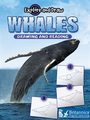 Whales, Drawing and Reading