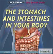 The Stomach and Intestines in your Body