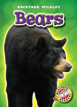 Cover image for Bears