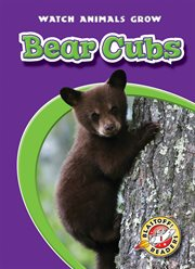Bear cubs cover image