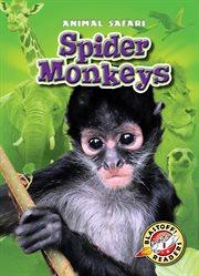Spider monkeys cover image