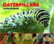Caterpillars cover image