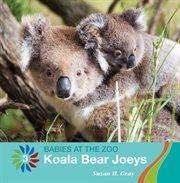 Koala bear joeys cover image