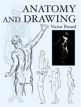 Cover image for Anatomy and Drawing