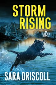 Storm rising cover image