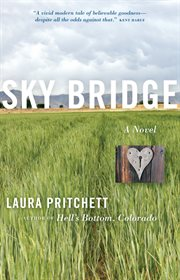 Sky bridge cover image