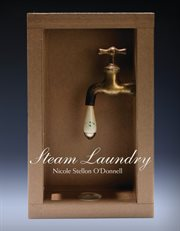 Steam Laundry