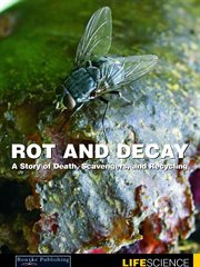 Rot and Decay