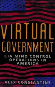 Virtual Government