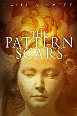 Cover image for The Pattern Scars