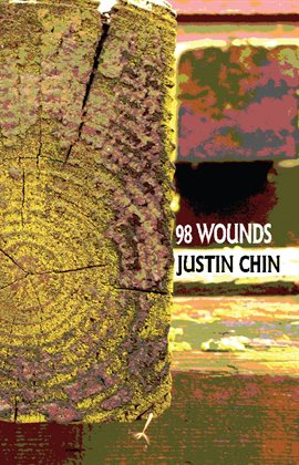 Cover image for 98 Wounds