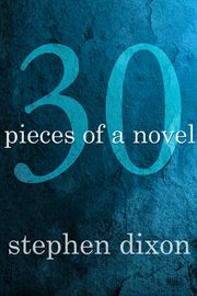 30: pieces of a novel cover image