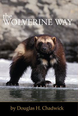 Cover image for The Wolverine Way