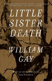 Little sister death cover image