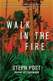 Walk in the fire cover image