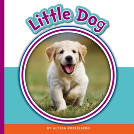 Cover image for Little Dog