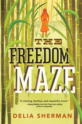 Cover image for The Freedom Maze
