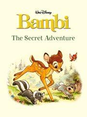 The Secret Adventure