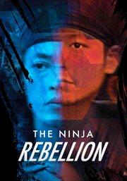 The ninja rebellion