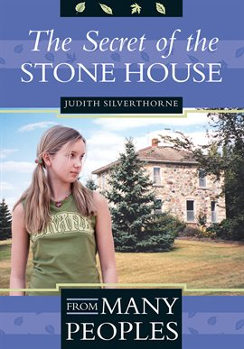 Cover image for The Secret of the Stone House