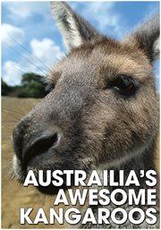 Australia's Awesome Kangaroos