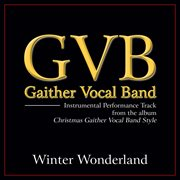 Winter wonderland (performance tracks) cover image