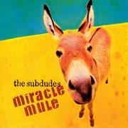 Miracle Mule