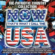 Now That's What I Call The U.S.A. / Various Artists