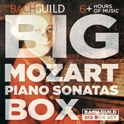 Big mozart piano sonatas box cover image