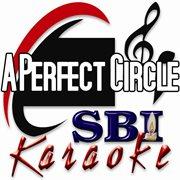 A Perfect Circle: Karaoke