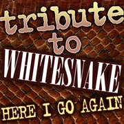 Tribute to Whitesnake - Here I Go Again