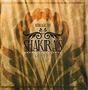 Homage to Shakira's Greatest Hits