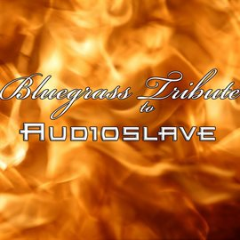Bluegrass Tribute To Audioslave