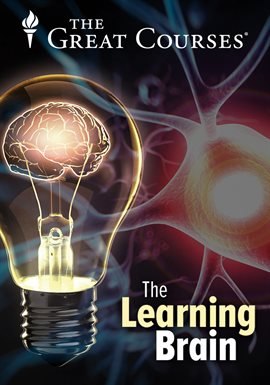 Training Your Working Memory