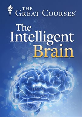 Cover image for Intelligence, Child Rearing, and Education