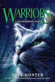 A dangerous path cover image