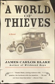 A world of thieves : a novel cover image