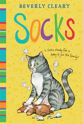 Cover image for Socks