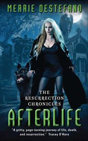 Afterlife : the resurrection chronicles cover image